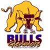 Bulls old logo