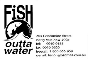 fish outtawater