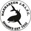 Narrabeen Sharks