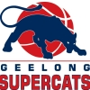 Supercats Logo