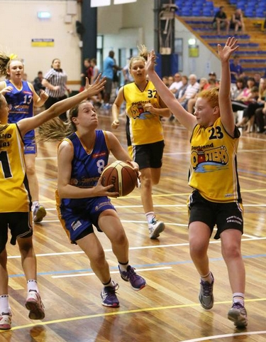 Bendigo junior basketball