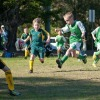 St Ives MiniRoos