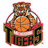 MELBOURNE TIGERS BOYS