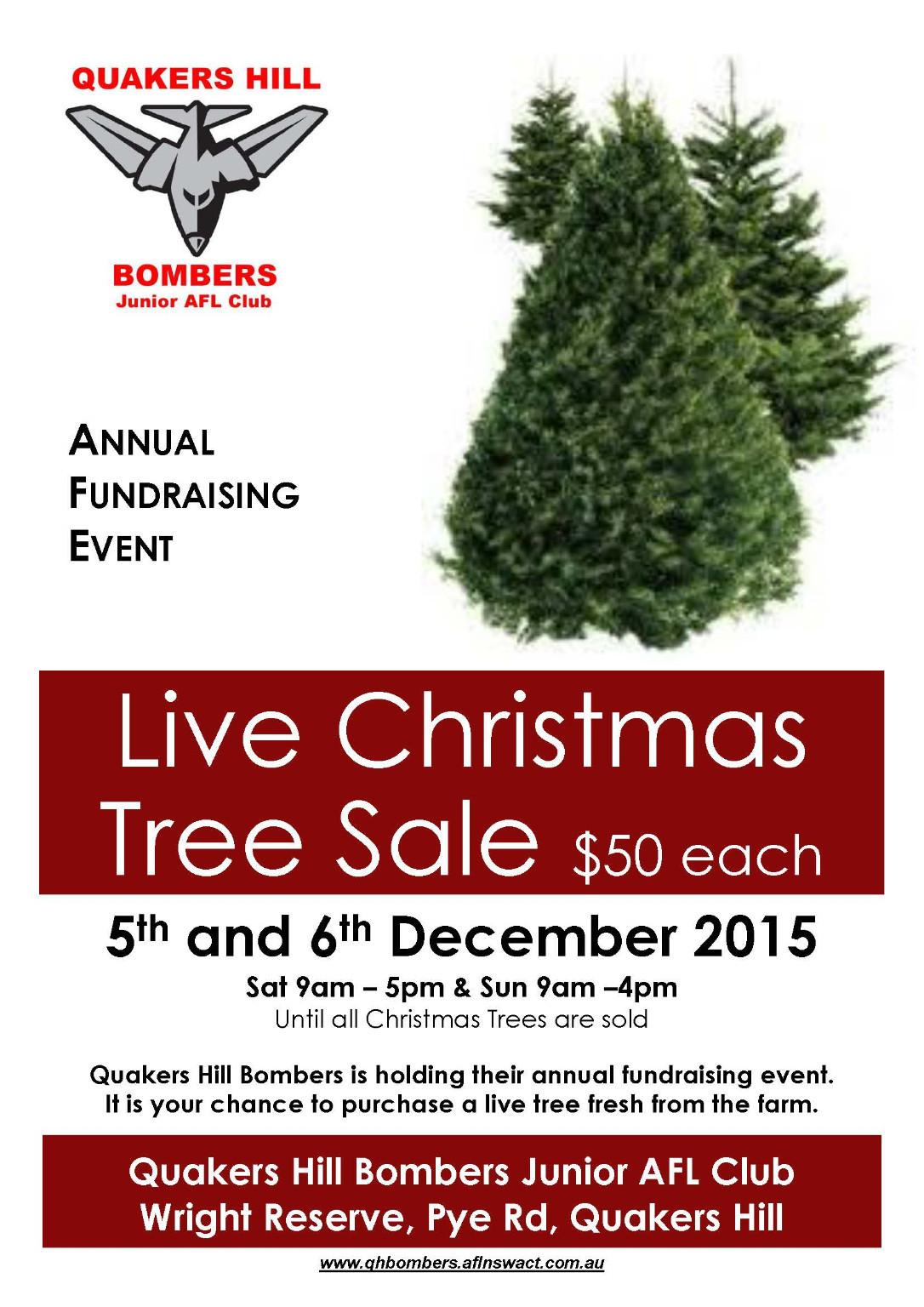 2015 christmas tree sale - Christmas Tree For Sale