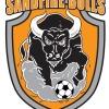Sandfire Bulls
